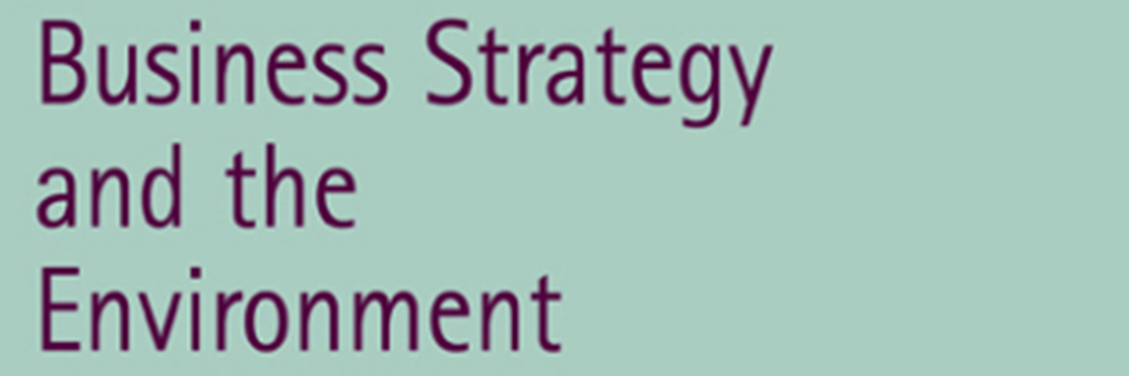 Business Strategy and the Environment